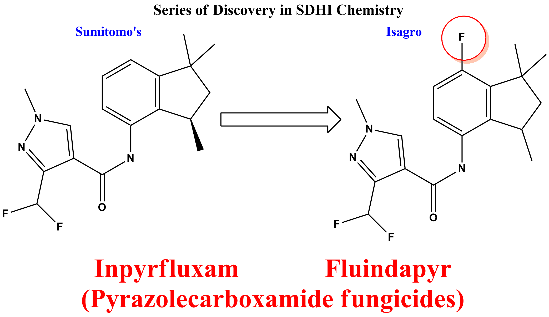 Fluindapyr: A new fungicide molecule from Isagro, effective