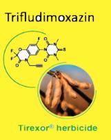 BASF_Trifludimoxazin